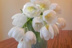 Blume-Tulpe-Weiß-Blumenstrauß-Glas-Vase-Fruehling