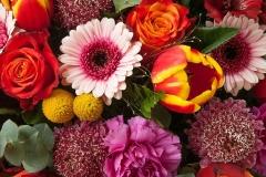 Blumen-Blumenstrauß-Pflanzen-Tulpen-Rosen-Bluete