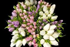 Blumen-Blumenstrauß-Tulpen-Bunte-Farbe-Schöne