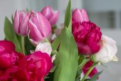 Blumen-Pfingstrosen-Tulpen-Rosen-Strauß-Bunt