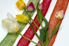 Blumen-Tulpen-Blumenstrauss-Fruehling
