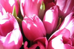 Blumenstrauß-Blumen-Frisch-Garten-Muetter-Tag