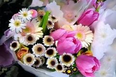 Blumenstrauß-Tulpen-Fruehling-Gänsebluemchen-Gerber